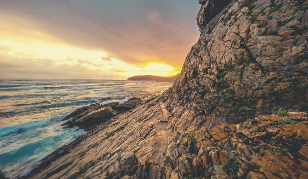 5 things not to miss at Plettenberg Bay