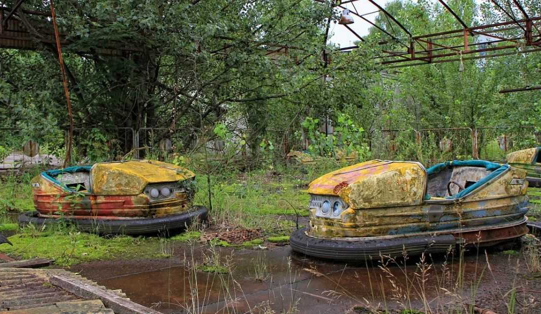 The Chernobyl disaster might have created a paradise