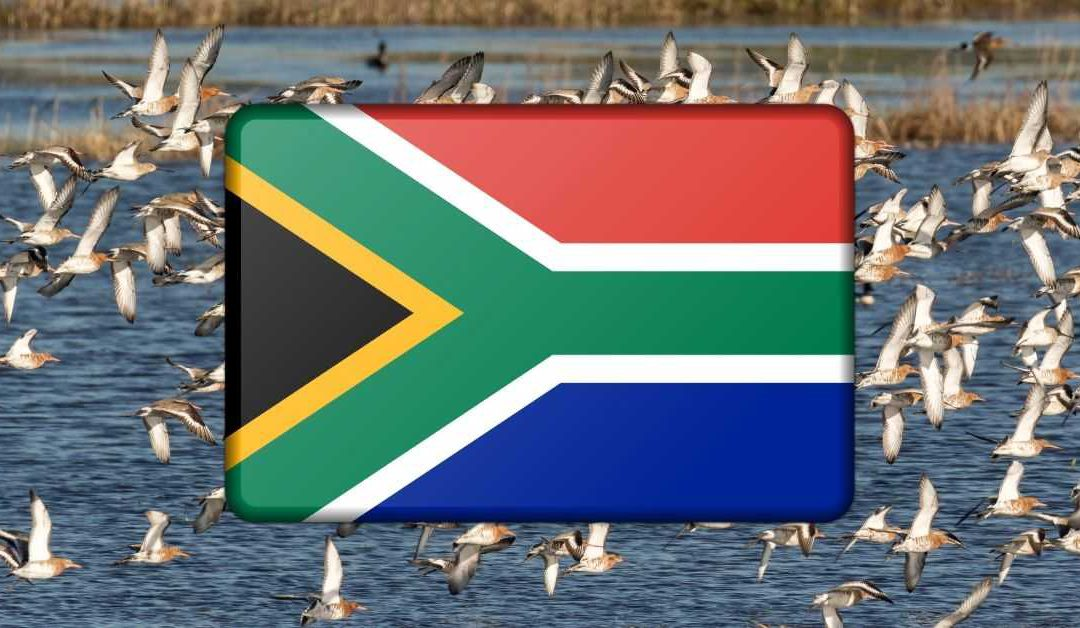 financial-emigration-south-africa