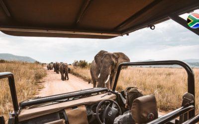 Virtual Safari South Africa